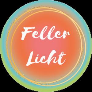 Feller Licht workshops